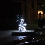 intothelight-neustetter-wam06