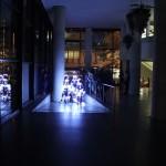 intothelight-neustetter-wam21
